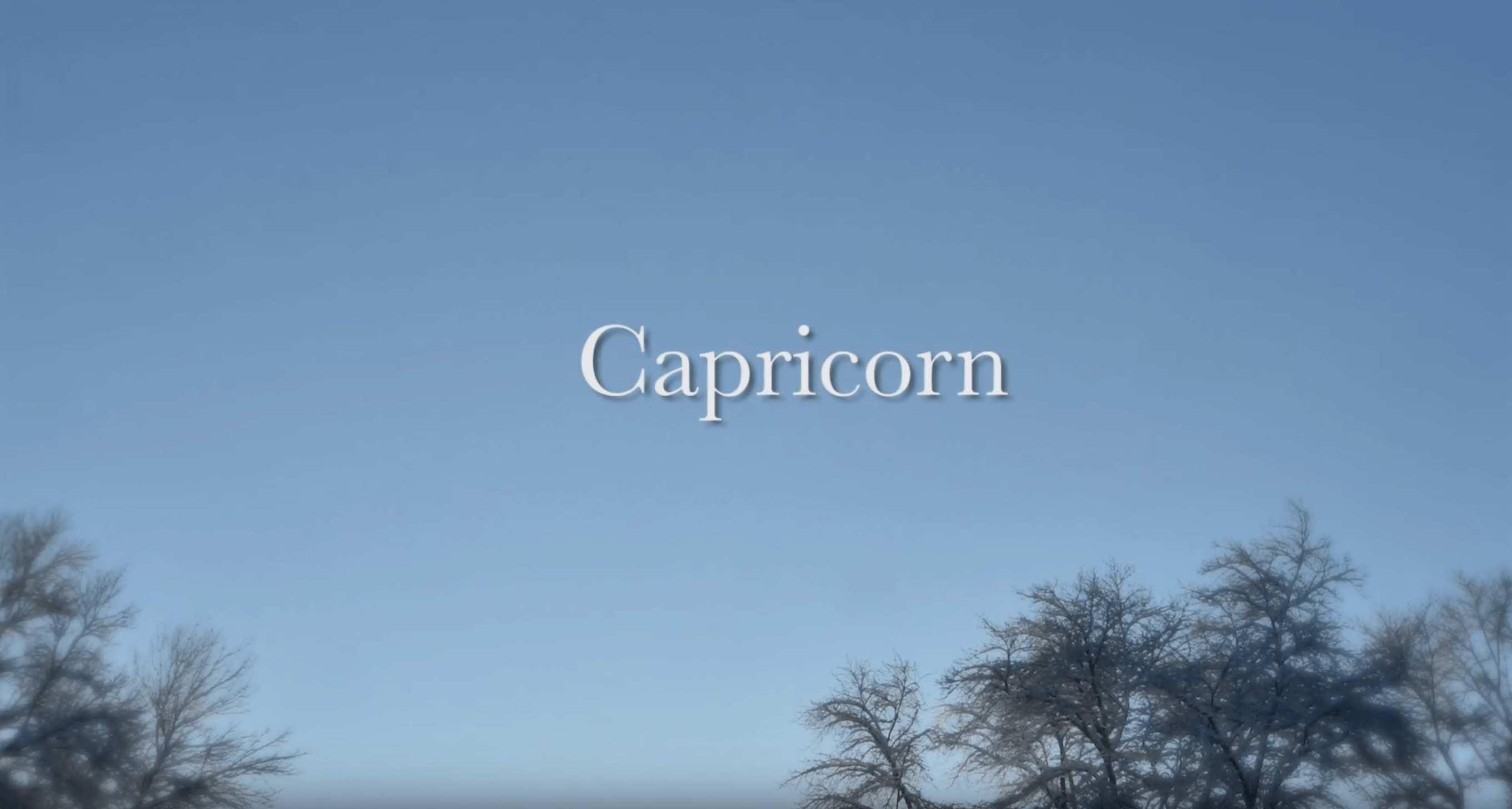 capricorn-screenshot-martha-brill